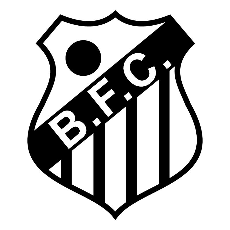 Brasil Futebol Clube de Santos SP vector