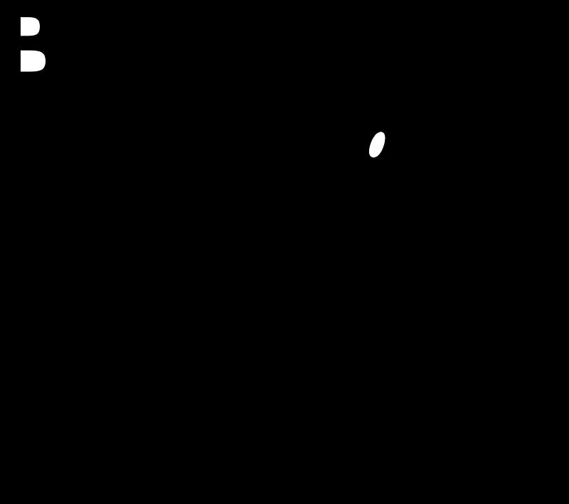 BUCKEYE NUTRITION vector
