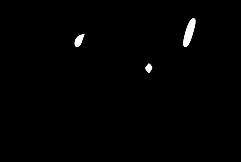 Castrol Racing vector logo