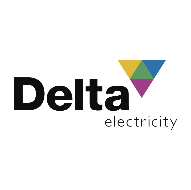 Delta Electricity vector