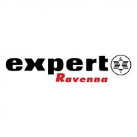 Expert Ravenna vector