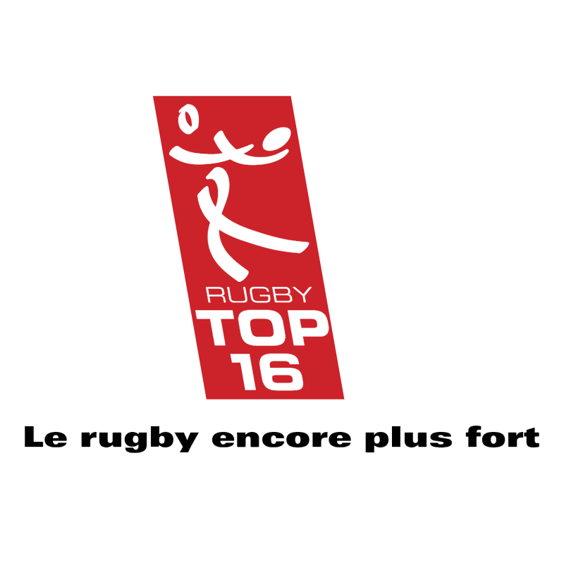 Rugby Top 16 vector