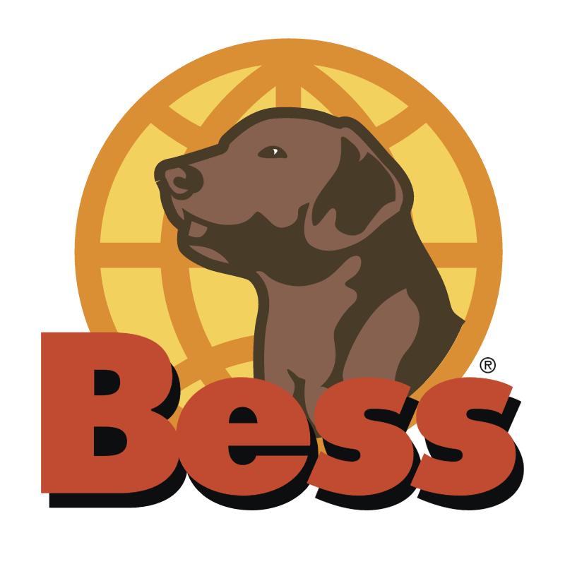 Bess vector