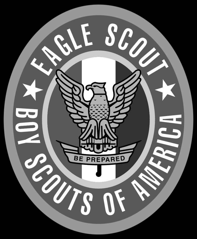 Boy Scouts Eagle Scout vector
