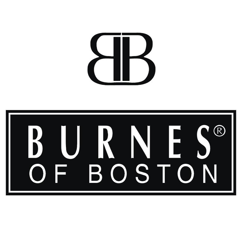 Burnes Of Boston 33156 vector