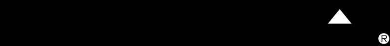 CHEVY LUMINA vector