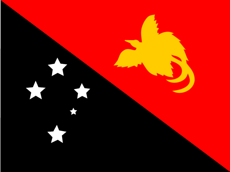 Flag of Papua New Guinea vector