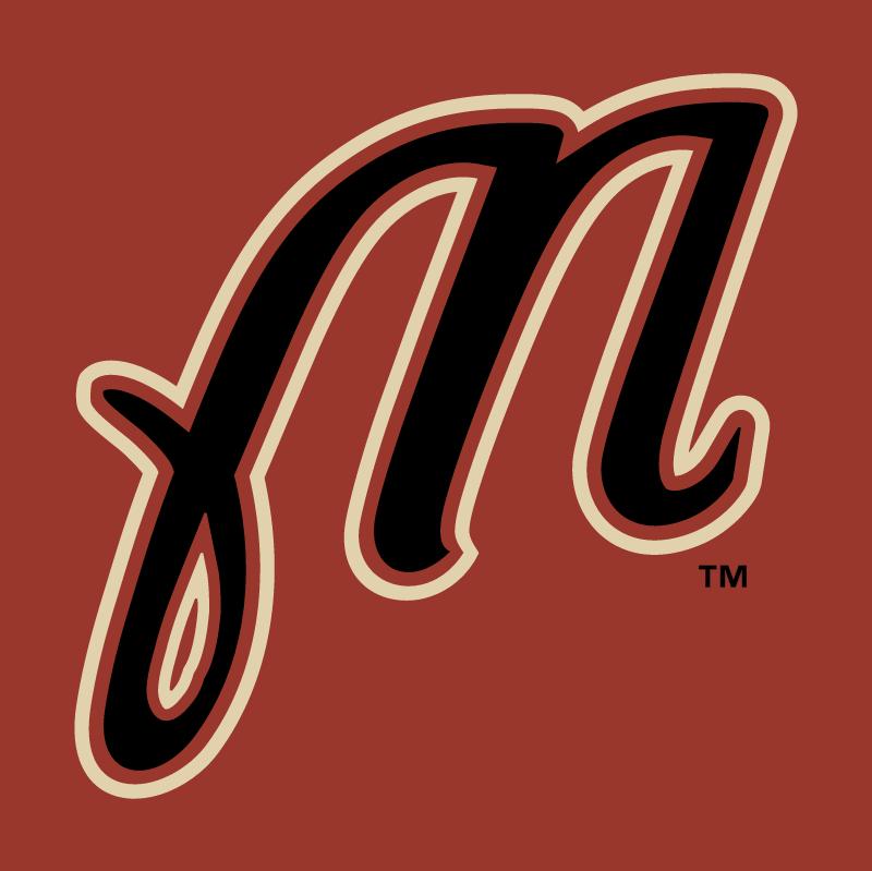 Martinsville Astros vector