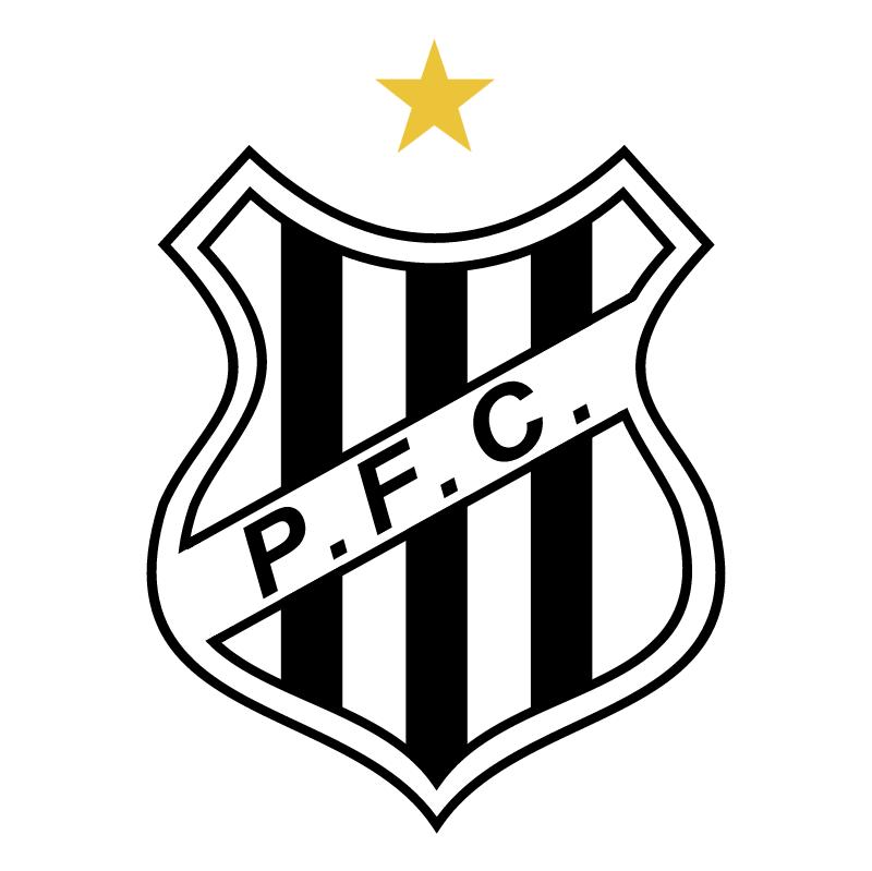 Palmeiras Futebol Clube de Sao Joao da Boa Vista SP vector