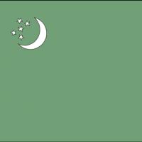turkmnst vector
