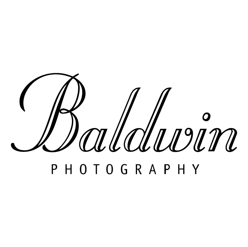 Baldwin 51408 vector
