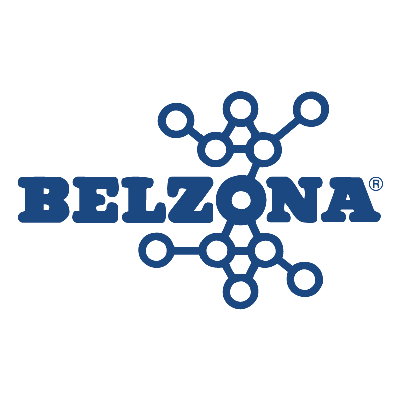 Belzona vector