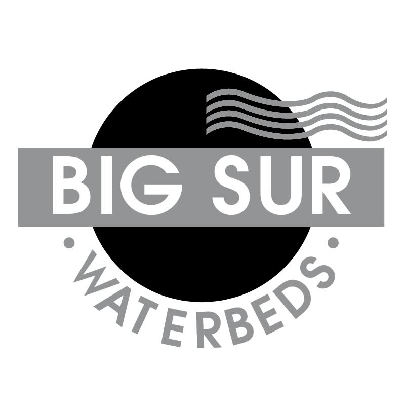 Big Sur 55598 vector