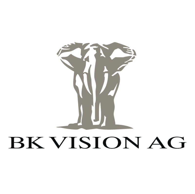 BK Vision vector