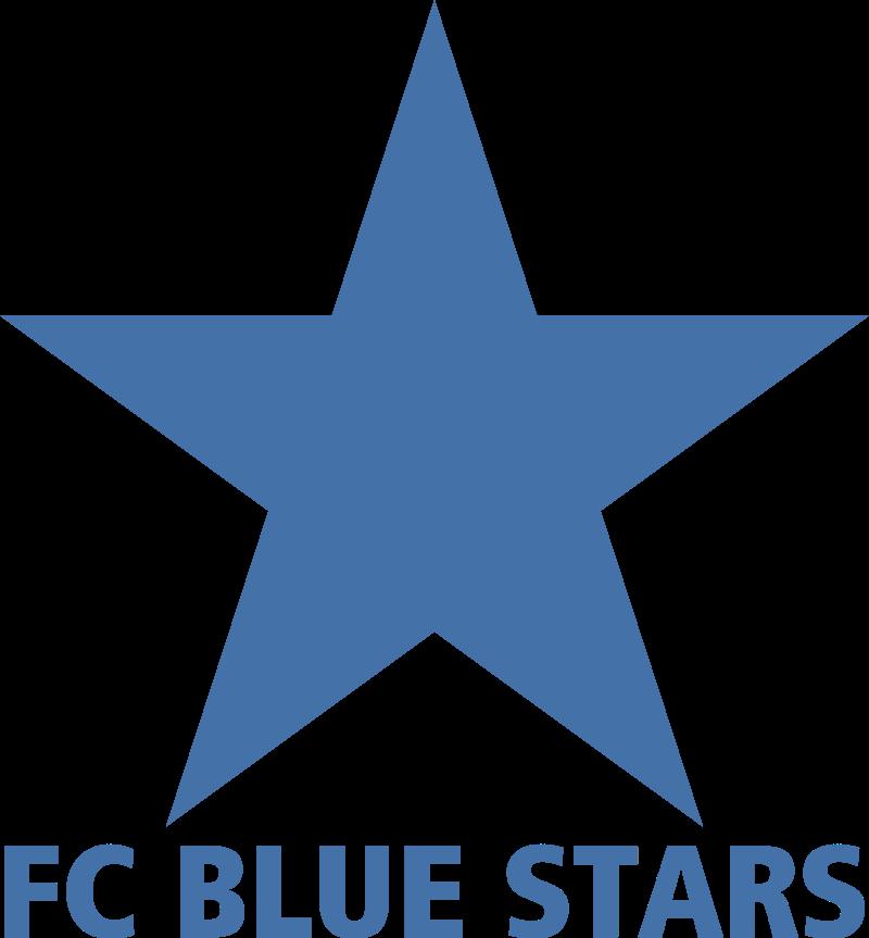 blue stars zurich vector