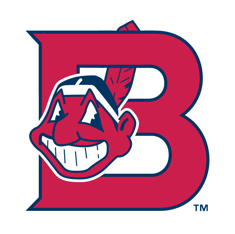 Burlington Indians vector