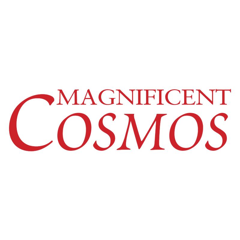 Magnificent Cosmos vector