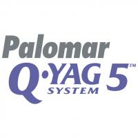 Palomar Q YAG 5 System vector