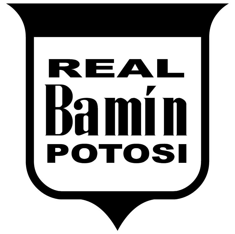 Real Bamin Potosi vector