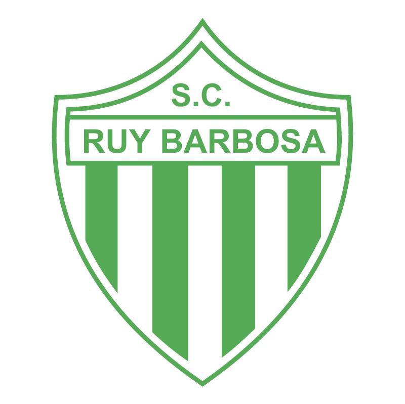 Sport Club Ruy Barbosa de Porto Alegre RS vector