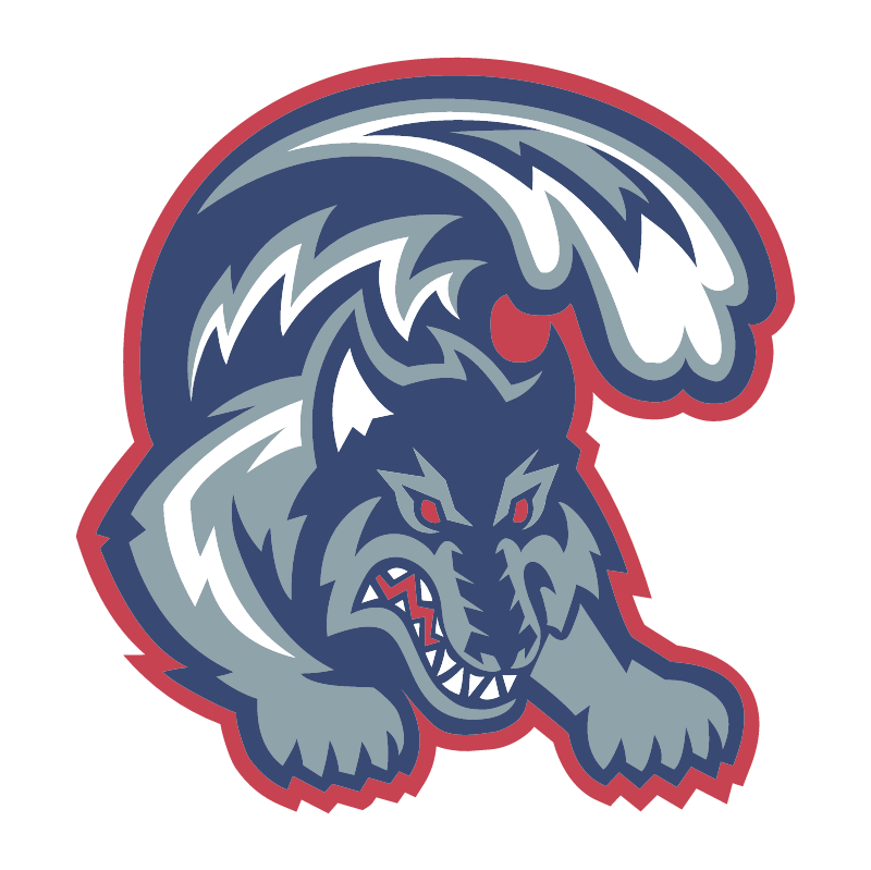 Stony Brook Seawolves vector