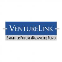 VentureLink vector