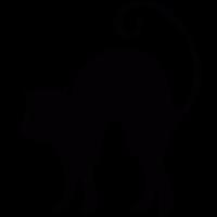 Fright Cat vector