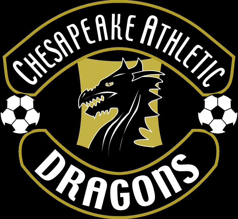 chesapeake atl dragons vector