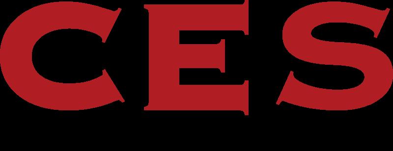 Conseil en securite logo vector