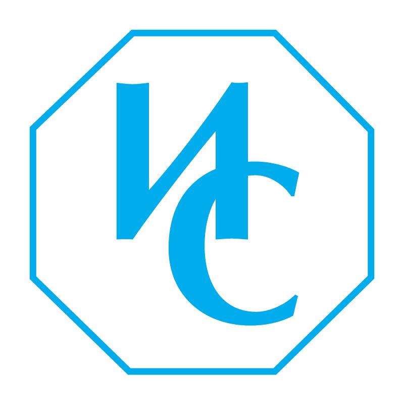 Ivanov Company vector