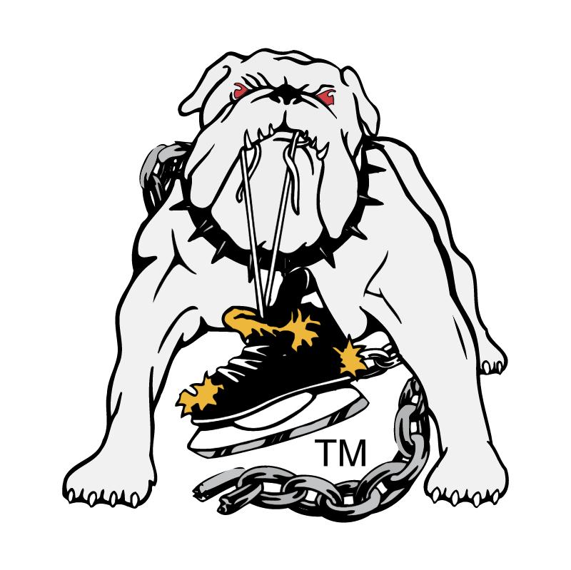 Long Beach Ice Dogs vector