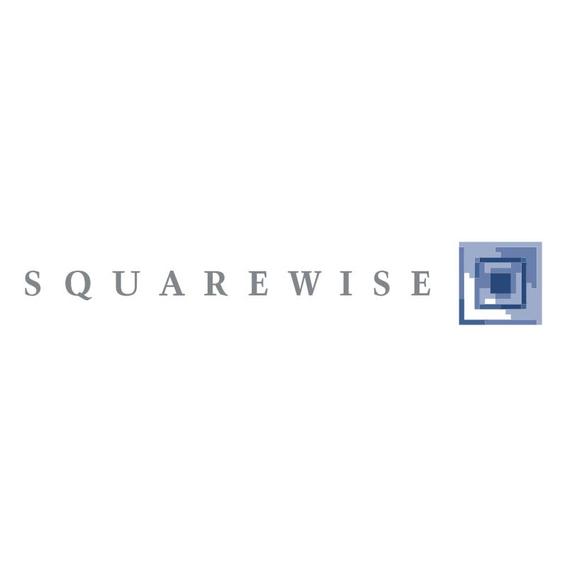 Squarewise vector