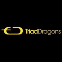 Triad Dragons vector