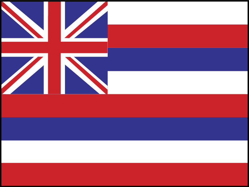 hawaii vector