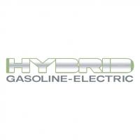 Hybrid vector