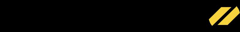 DYNAMIC2 vector