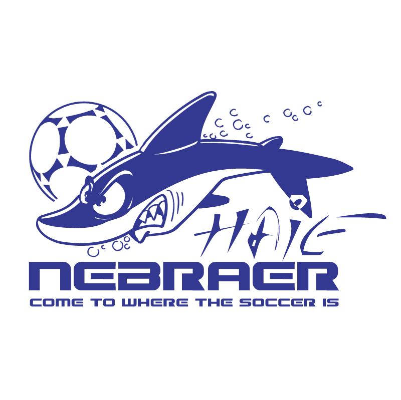 Nebraer Haie vector