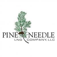 Pine Needle vector