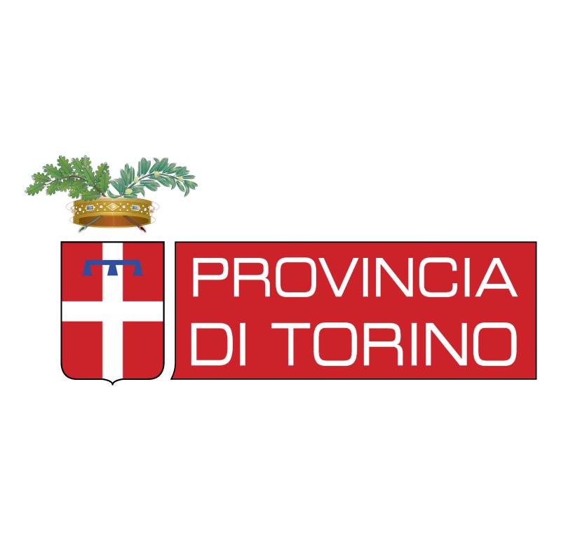 Provincia di Torino vector