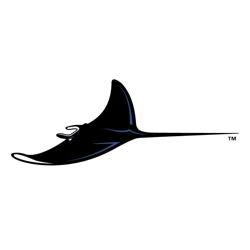 Tampa Bay Devil Rays vector logo