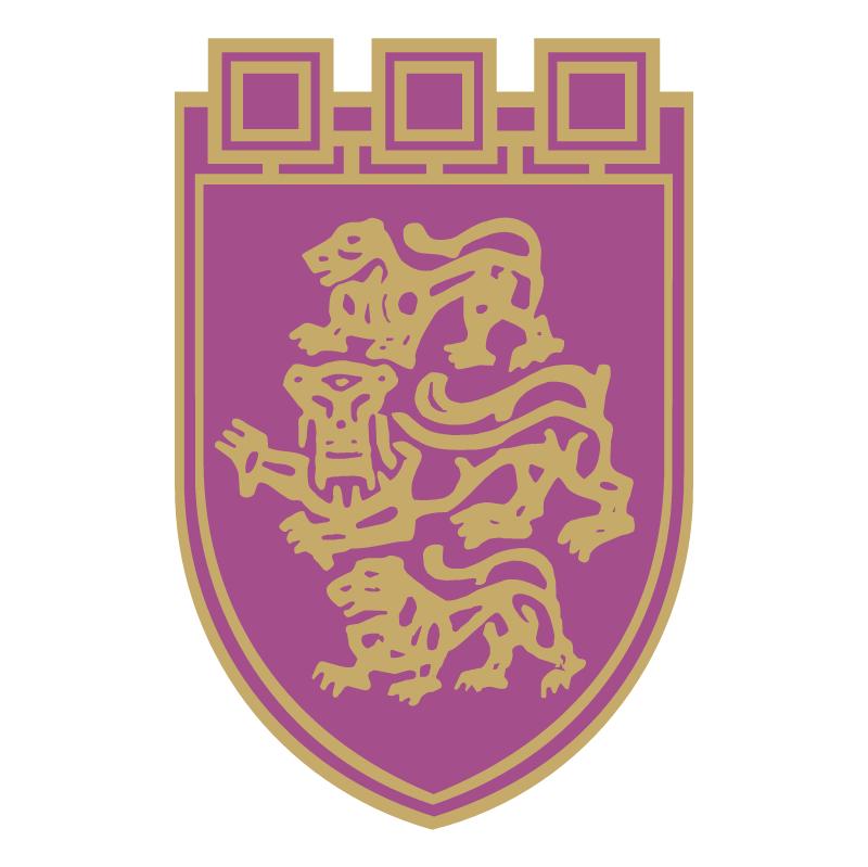Veliko Tarnovo vector