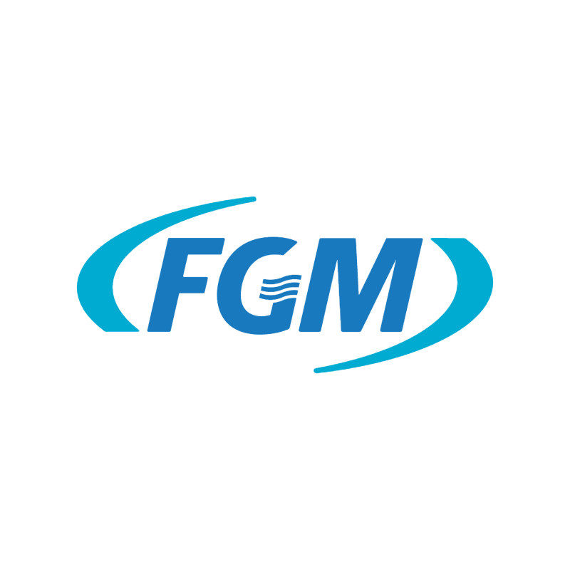 FGM vector