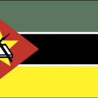 mozambiq vector