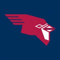 SVSU Cardinals vector