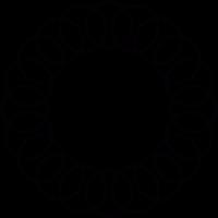 Circular ring of an spiral vector
