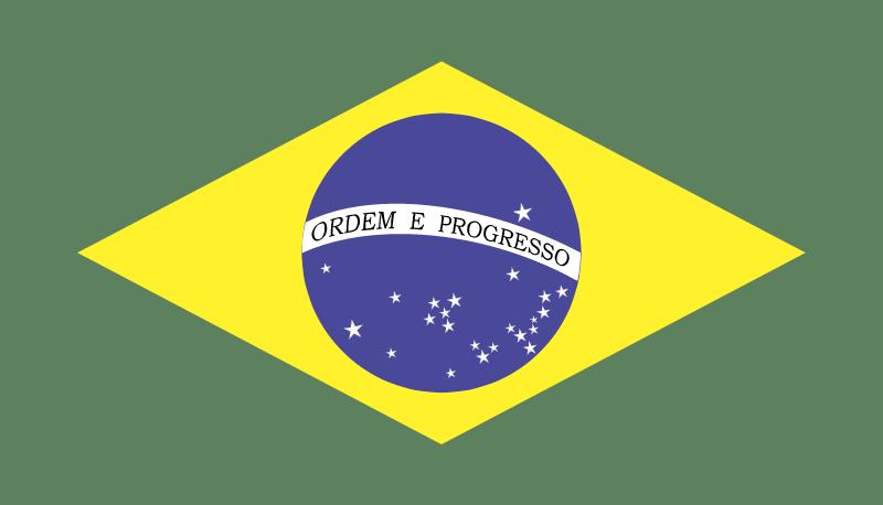 Bandeirado Brasil vector