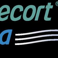 Budecort vector