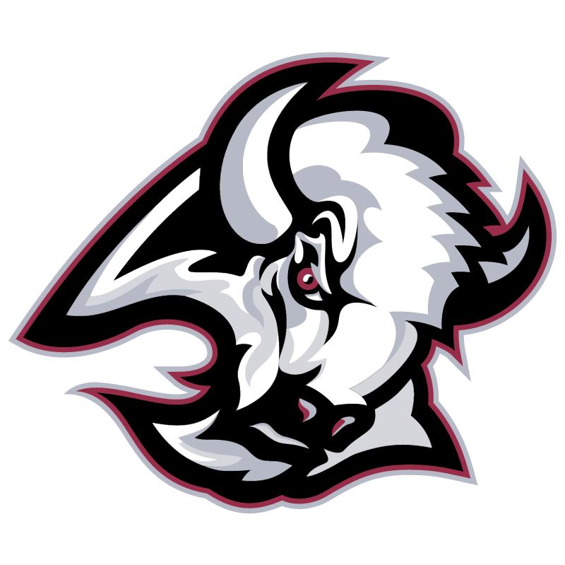Buffalo Sabres 20501 vector
