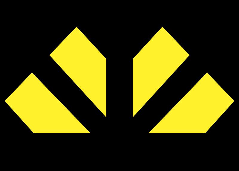 CRICIUMA vector