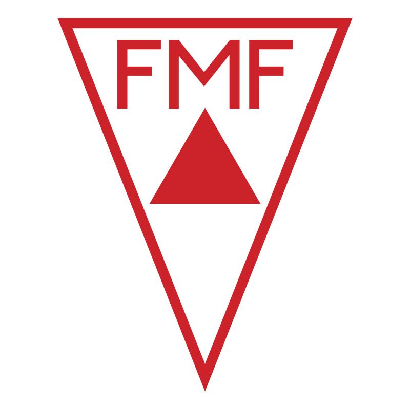 Federacao Mineira de Futebol MG vector